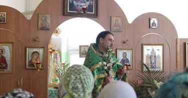 вербное воскресение в храме святителя луки
